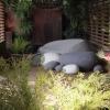 australian-garden-4