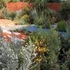 australian-garden-5
