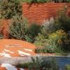 australian-garden-6