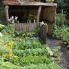 childs-garden-in-wales-1