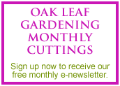 Sign up to our monthly e-newsletter, starting 2011