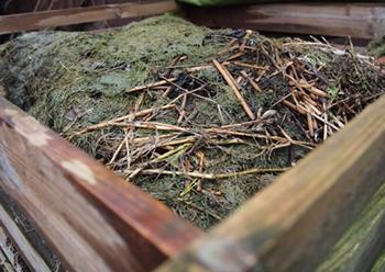 A compost heap